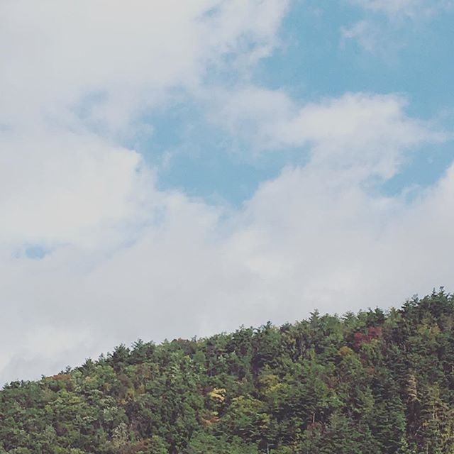 """秋を通り越し冬!?というくらい寒いですが、冷えてくると体調が(ー ー;)という方ぜひ""""つみき""""へ!今日も、通常営業してます(^ ^) #健康整体の家つみき #健康整体 #操体法 #健康 #福島市 #fukusima #ボテフォレパン #女性スタッフ #冷え #男性も可 #ご予約お待ちしております"""