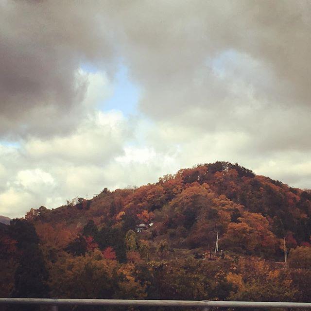 曇り空な今日は医学院へ!!今日はどんな楽しい出会いがあるのかワクワクしながら仙台へ(^ ^)♪つみきはお休みさせて頂きますm(._.)m #健康整体の家つみき #健康整体 #福島市 #fukusima #仙台 #操体法 #今日の出会い #ワクワク #曇り空