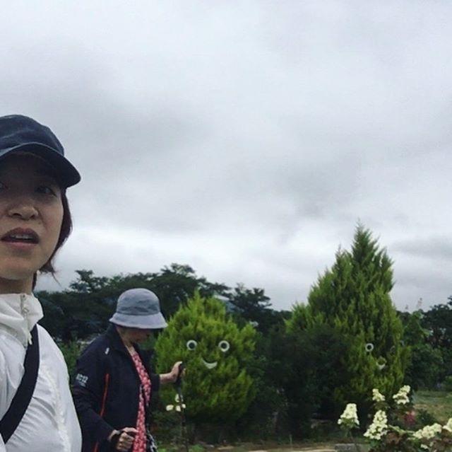 ウォーキング飯坂支所→医王寺→舘ノ山公園。2時間で10,000歩、約8km楽しかった〜♪