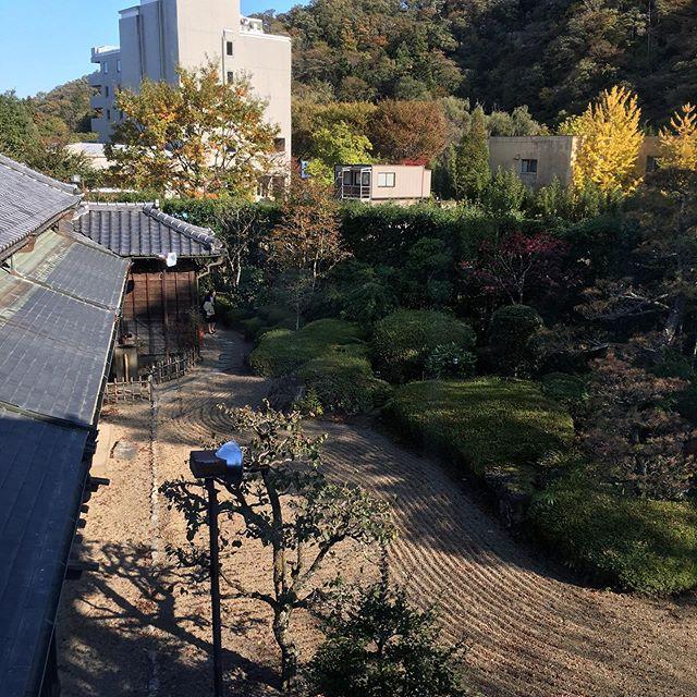 鐘景閣を見学紅葉の時季にとても素敵な庭園を観ることができ、幸せです♪ありがとうございました