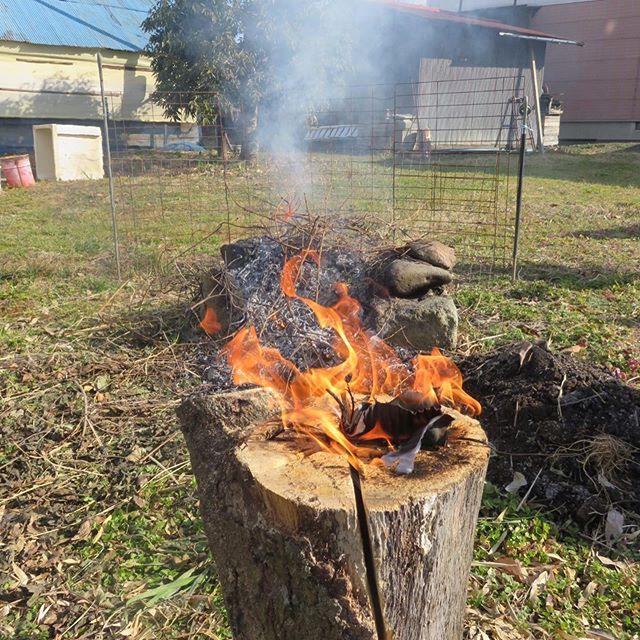大寒🥶一年で1番寒い日だけど負けず焚き火会今年やりたいこと2つもかなって幸せです♪楽しかった〜